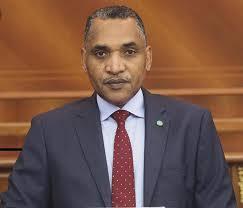 المهندس محمد سالم ولد البشير